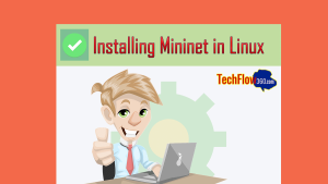 mininet install in linux